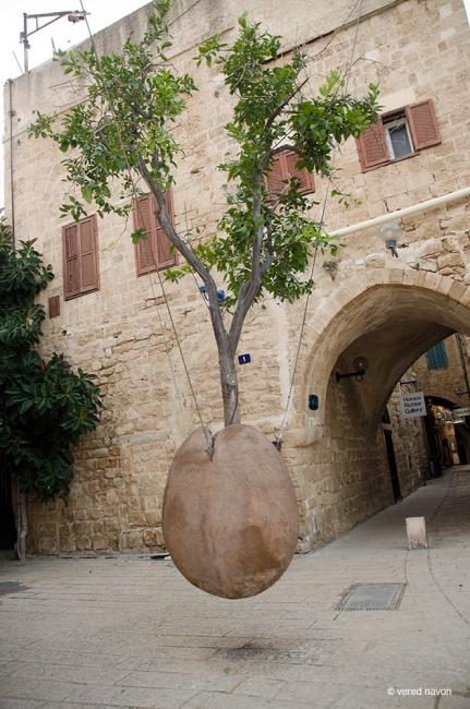 העץ המרחף - יצירה של רן מורין, יפו העתיקה.