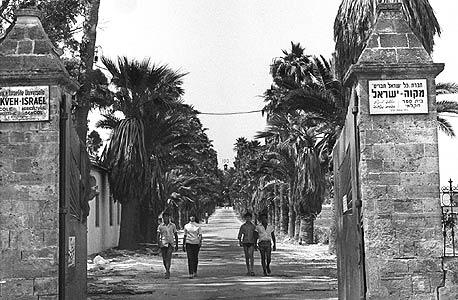 צילום היסטורי - השדרה במקווה ישראל, צילם משה מילנר, לע״מ